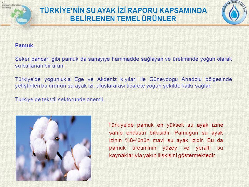 Pamuk: Şeker pancarı gibi pamuk da sanayiye hammadde sağlayan ve üretiminde yoğun olarak su kullanan bir ürün. Türkiye'de yoğunlukla Ege ve Akdeniz kı