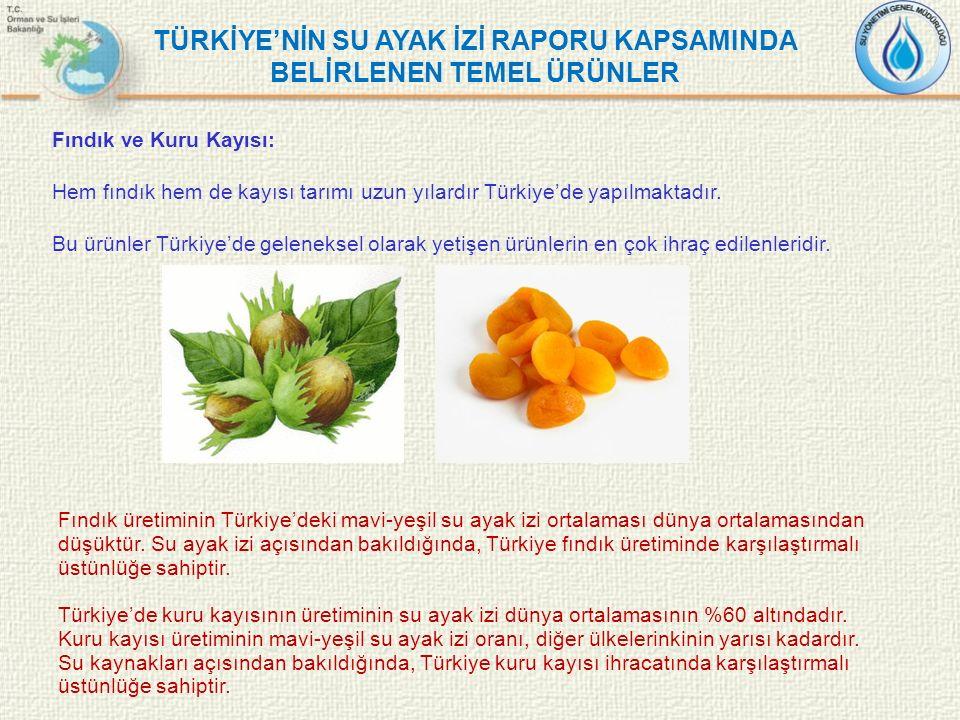 Fındık ve Kuru Kayısı: Hem fındık hem de kayısı tarımı uzun yılardır Türkiye'de yapılmaktadır. Bu ürünler Türkiye'de geleneksel olarak yetişen ürünler