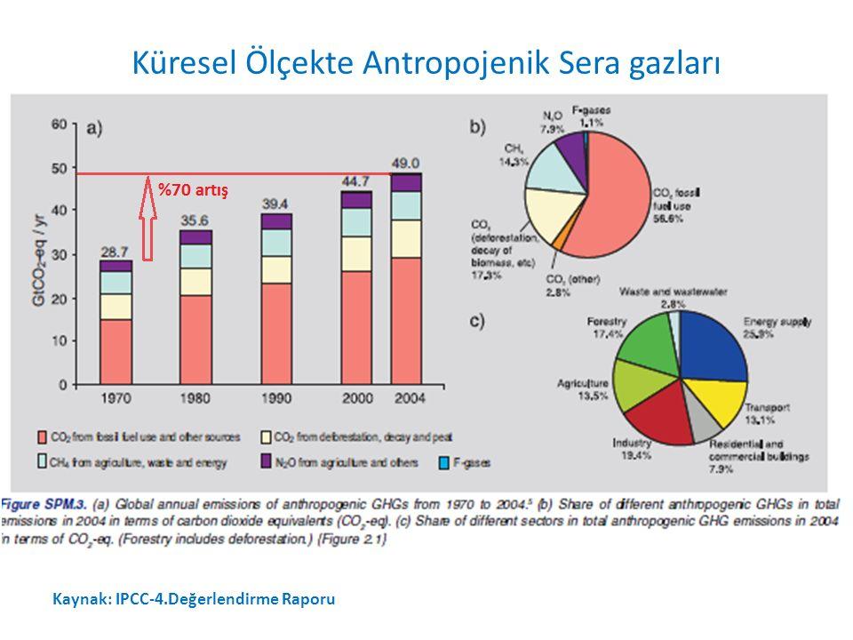 Kaynak: IPCC-4.Değerlendirme Raporu Küresel Ölçekte Antropojenik Sera gazları