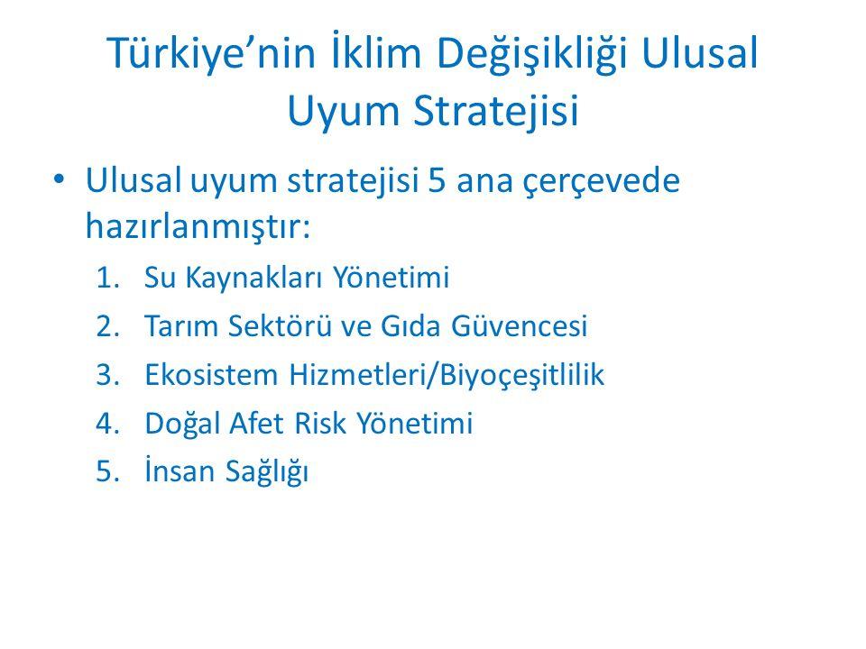 Türkiye'nin İklim Değişikliği Ulusal Uyum Stratejisi Ulusal uyum stratejisi 5 ana çerçevede hazırlanmıştır: 1.Su Kaynakları Yönetimi 2.Tarım Sektörü ve Gıda Güvencesi 3.Ekosistem Hizmetleri/Biyoçeşitlilik 4.Doğal Afet Risk Yönetimi 5.İnsan Sağlığı
