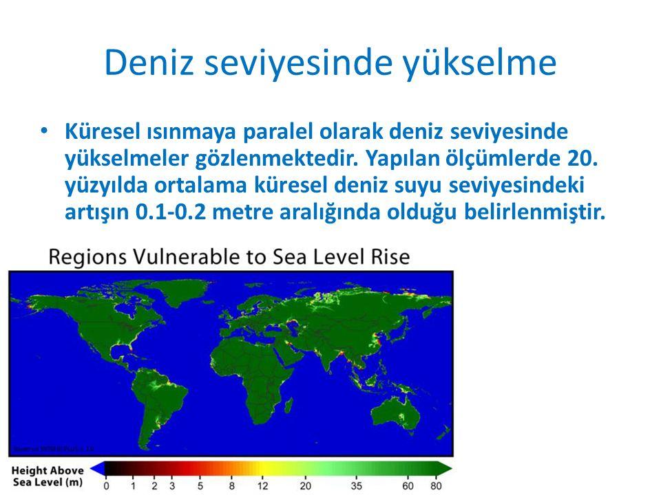 Deniz seviyesinde yükselme Küresel ısınmaya paralel olarak deniz seviyesinde yükselmeler gözlenmektedir.