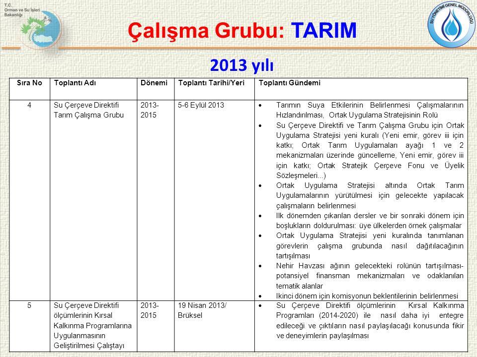22 Çalışma Grubu: TARIM Sıra NoToplantı AdıDönemiToplantı Tarihi/YeriToplantı Gündemi 4 Su Çerçeve Direktifi Tarım Çalışma Grubu 2013- 2015 5-6 Eylül 2013  Tarımın Suya Etkilerinin Belirlenmesi Çalışmalarının Hızlandırılması, Ortak Uygulama Stratejisinin Rolü  Su Çerçeve Direktifi ve Tarım Çalışma Grubu için Ortak Uygulama Stratejisi yeni kuralı (Yeni emir, görev iii için katkı; Ortak Tarım Uygulamaları ayağı 1 ve 2 mekanizmaları üzerinde güncelleme, Yeni emir, görev iii için katkı; Ortak Stratejik Çerçeve Fonu ve Üyelik Sözleşmeleri...)  Ortak Uygulama Stratejisi altında Ortak Tarım Uygulamalarının yürütülmesi için gelecekte yapılacak çalışmaların belirlenmesi  Ilk dönemden çıkarılan dersler ve bir sonraki dönem için boşlukların doldurulması: üye ülkelerden örnek çalışmalar  Ortak Uygulama Stratejisi yeni kuralında tanımlanan görevlerin çalışma grubunda nasıl dağıtılacağının tartışılması  Nehir Havzası ağının gelecekteki rolünün tartışılması- potansiyel finansman mekanizmaları ve odaklanılan tematik alanlar  Ikinci dönem için komisyonun beklentilerinin belirlenmesi 5Su Çerçeve Direktifi ölçümlerinin Kırsal Kalkınma Programlarına Uygulanmasının Geliştirilmesi Çalıştayı 2013- 2015 19 Nisan 2013/ Brüksel  Su Çerçeve Direktifi ölçümlerinin Kırsal Kalkınma Programları (2014-2020) ile nasıl daha iyi entegre edileceği ve çıktıların nasıl paylaşılacağı konusunda fikir ve deneyimlerin paylaşılması 2013 yılı