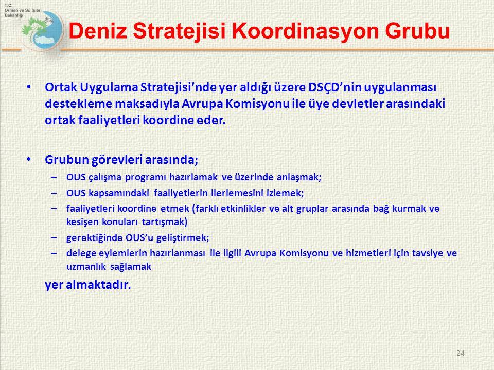 Deniz Stratejisi Koordinasyon Grubu Ortak Uygulama Stratejisi'nde yer aldığı üzere DSÇD'nin uygulanması destekleme maksadıyla Avrupa Komisyonu ile üye devletler arasındaki ortak faaliyetleri koordine eder.