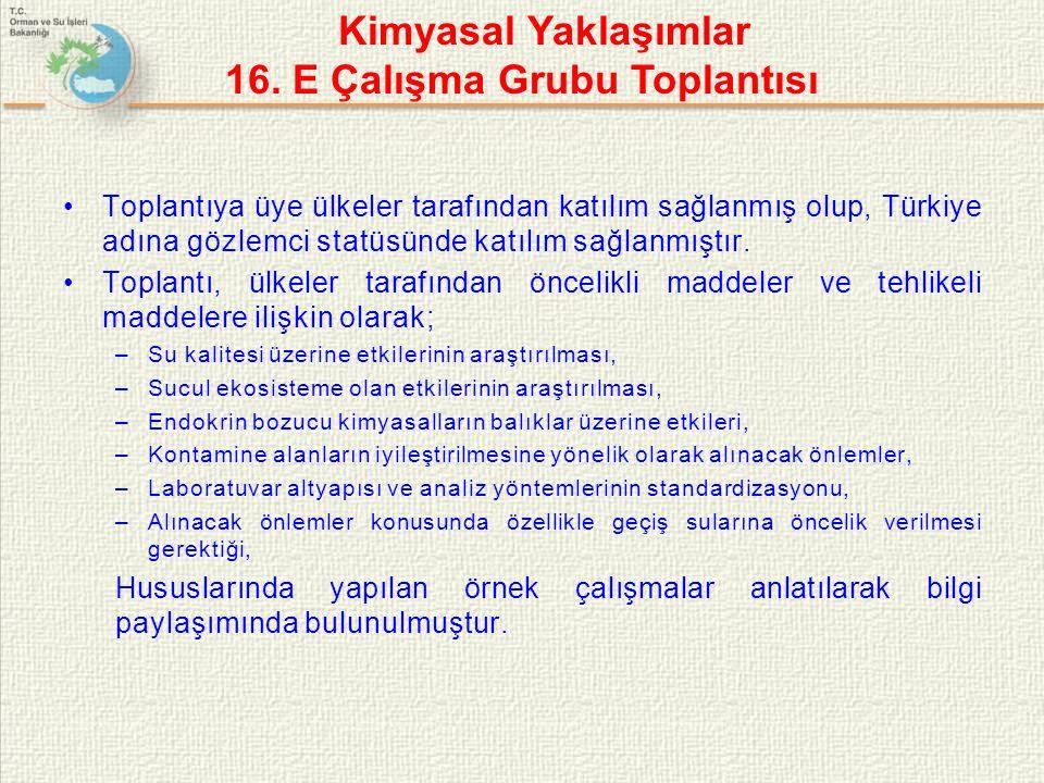 Toplantıya üye ülkeler tarafından katılım sağlanmış olup, Türkiye adına gözlemci statüsünde katılım sağlanmıştır.