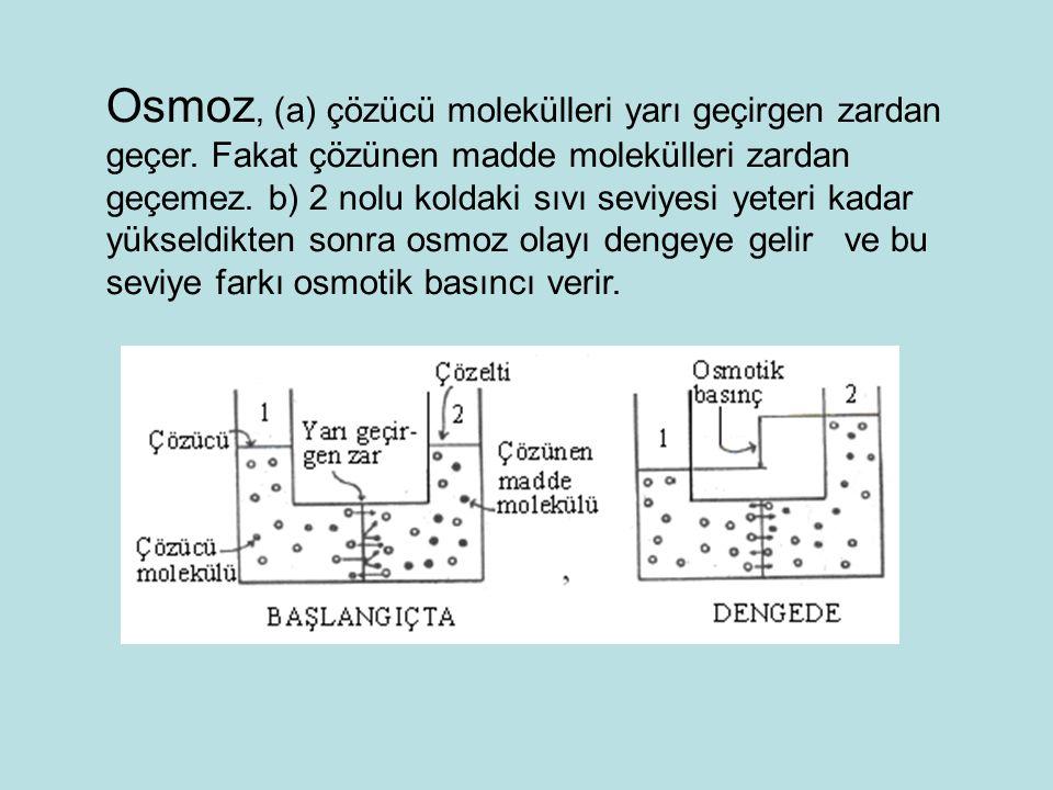 Osmoz, (a) çözücü molekülleri yarı geçirgen zardan geçer. Fakat çözünen madde molekülleri zardan geçemez. b) 2 nolu koldaki sıvı seviyesi yeteri kadar