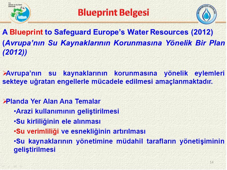 A Blueprint to Safeguard Europe's Water Resources (2012) (Avrupa'nın Su Kaynaklarının Korunmasına Yönelik Bir Plan (2012))  Avrupa'nın su kaynakların