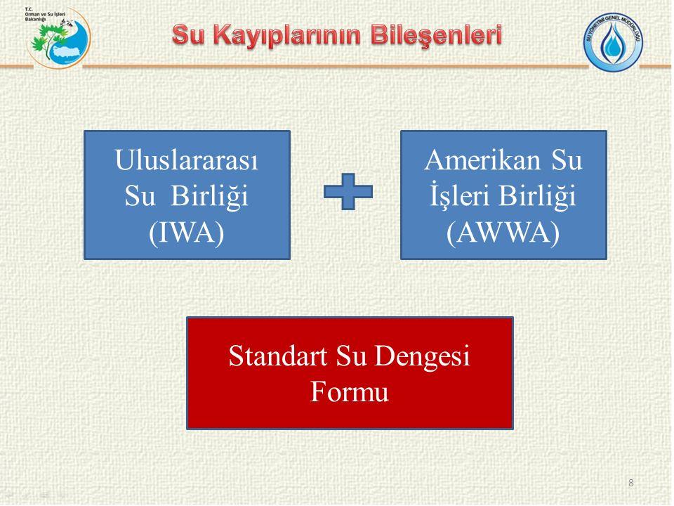 Uluslararası Su Birliği (IWA) Amerikan Su İşleri Birliği (AWWA) Standart Su Dengesi Formu 8