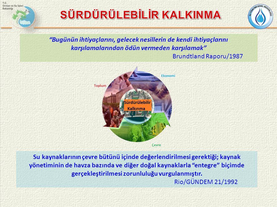 Entegre Su Kaynakları Yönetiminin Küresel çapta ele alınması: 1992:Uluslararası Su ve Çevre Konferansı / Dublin 2000:İkinci Dünya Su Forumu & Bakanlar Konferansı / Hague 2001:Uluslararası Tatlı Su Konferansı / Bonn 2002:Sürdürülebilir Kalkınma Zirvesi / Johannesburg 2003:Üçüncü Dünya Su Forumu / Kyoto 2006:Dördüncü Dünya Su Forumu / Meksiko 2009:Beşinci Dünya Su Forumu / İstanbul 2012:Altıncı Dünya Su Forumu / Marsilya 1.Entegre su kaynakları yönetimine geçilmesi 2.Suyun ekonomik bir mal olarak dikkate alınması gerektiği, 3.Yerelden yönetimin desteklenmesi, 4.Katılımcı yaklaşım ve kadınların karar alma süreçlerine dahil olması vurgulanmıştır.