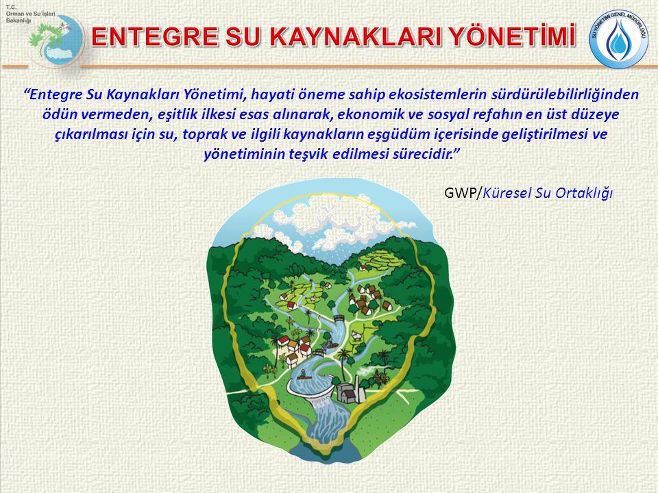 1972 Stockholm Konferansı (BM İnsan ve Çevre Konferansı) 1975 1980 Yüzey Suları Direktifi, İçmesuyu Direktifi 1988 Avrupa Tek Senedi (Ortak çevre politikası için önemli adım) 1991 Kentsel Atıksu Yönetimi Direktifi 1991 Nitrat Direktifi Yeni İçme suyu Direktifi 1996 Entegre Kirlilik Önleme ve Kontrolü Direktifi 1996 Su Çerçeve Direktifi Taslağının AB Komisyonu tarafından hazırlanması 2000 Su Çerçeve Direktifi'nin (2000/60/EC) yürürlüğe girmesi SÇD Tarihsel Gelişimi