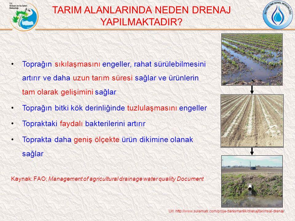 Toprağın sıkılaşmasını engeller, rahat sürülebilmesini artırır ve daha uzun tarım süresi sağlar ve ürünlerin tam olarak gelişimini sağlar Toprağın bitki kök derinliğinde tuzlulaşmasını engeller Topraktaki faydalı bakterilerini artırır Toprakta daha geniş ölçekte ürün dikimine olanak sağlar Kaynak: FAO; Management of agricultural drainage water quality Document TARIM ALANLARINDA NEDEN DRENAJ YAPILMAKTADIR.