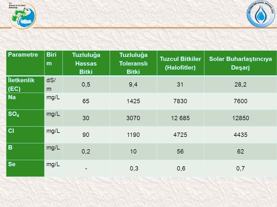 Parametre Biri m Tuzluluğa Hassas Bitki Tuzluluğa Toleranslı Bitki Tuzcul Bitkiler (Halofitler) Solar Buharlaştırıcıya Deşarj İletkenlik (EC) dS/ m 0,59,43128,2 Namg/L 65142578307600 SO 4 mg/L 30307012 68512850 Clmg/L 90119047254435 Bmg/L 0,2105662 Semg/L - 0,3 0,60,7
