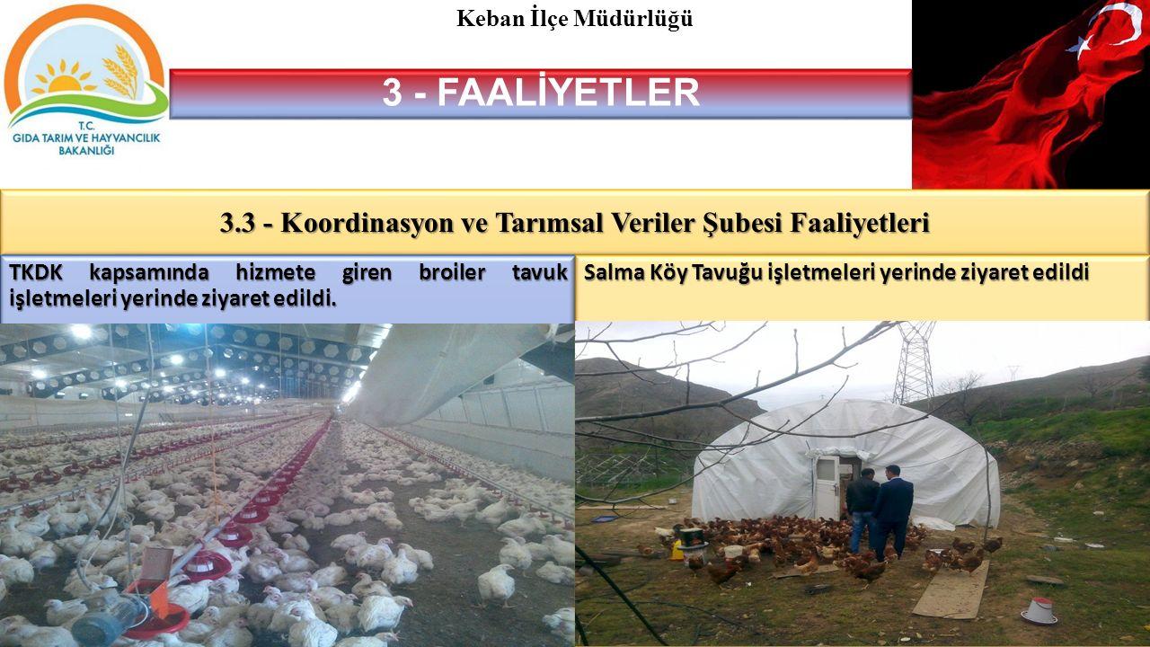 3 - FAALİYETLER 3.3 - Koordinasyon ve Tarımsal Veriler Şubesi Faaliyetleri Keban İlçe Müdürlüğü TKDK kapsamında hizmete giren broiler tavuk işletmeleri yerinde ziyaret edildi.