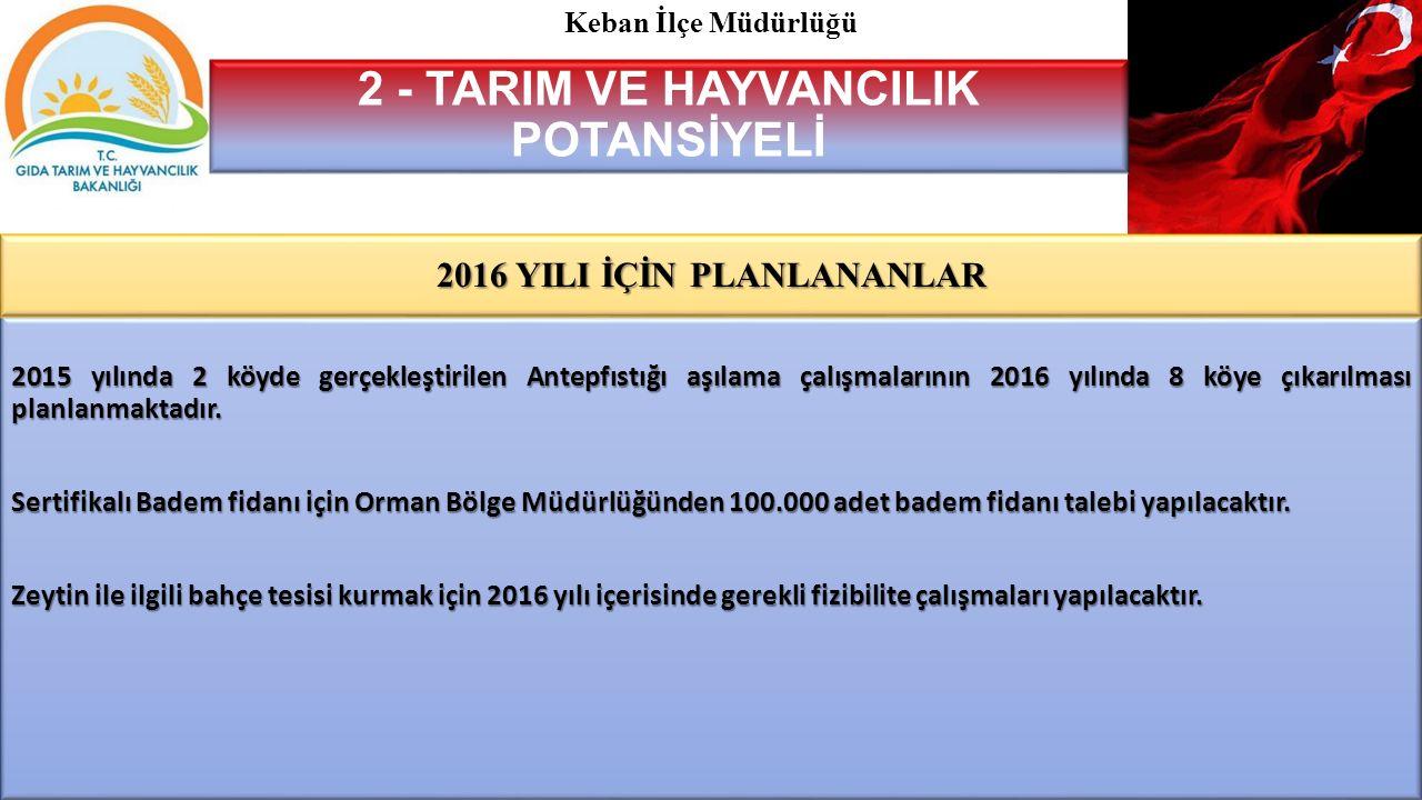 2015 yılında 2 köyde gerçekleştirilen Antepfıstığı aşılama çalışmalarının 2016 yılında 8 köye çıkarılması planlanmaktadır.