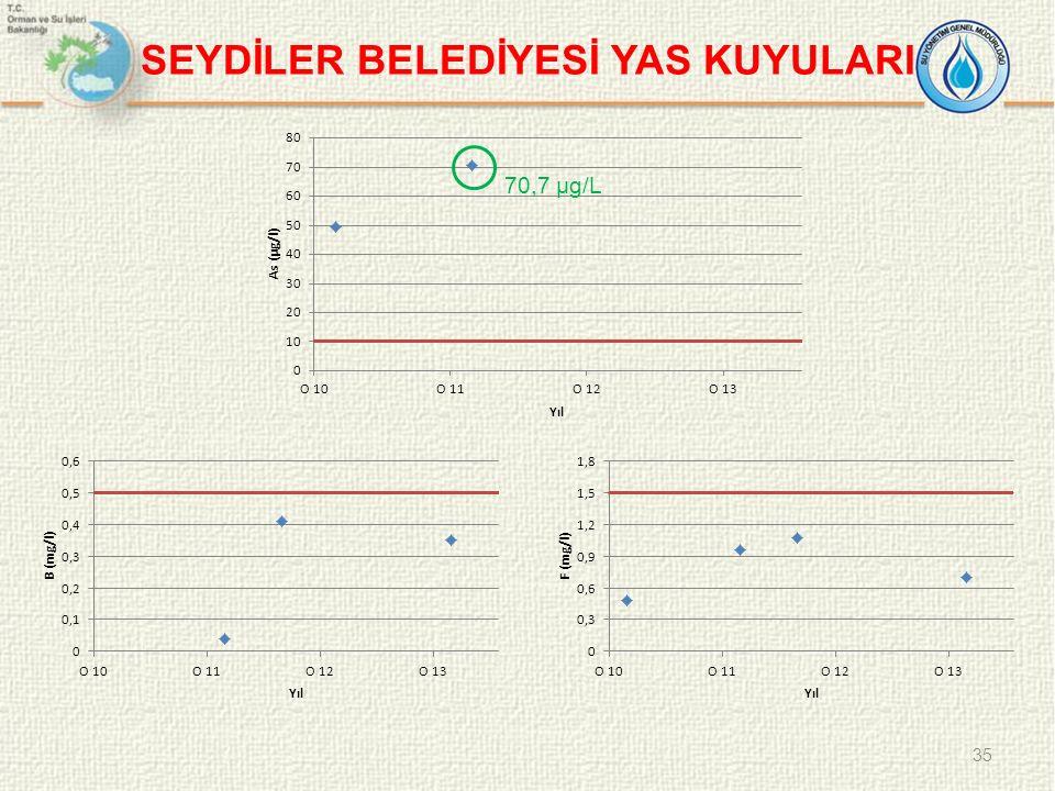 SEYDİLER BELEDİYESİ YAS KUYULARI 35 70,7 µg/L