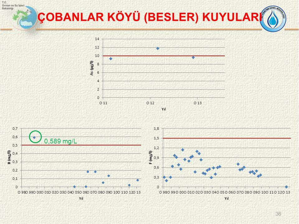 ÇOBANLAR KÖYÜ (BESLER) KUYULARI 36 0,589 mg/L