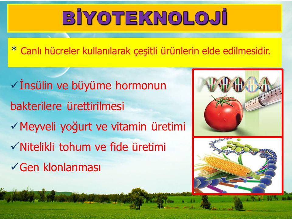 * Canlı hücreler kullanılarak çeşitli ürünlerin elde edilmesidir. İnsülin ve büyüme hormonun bakterilere ürettirilmesi Meyveli yoğurt ve vitamin üreti
