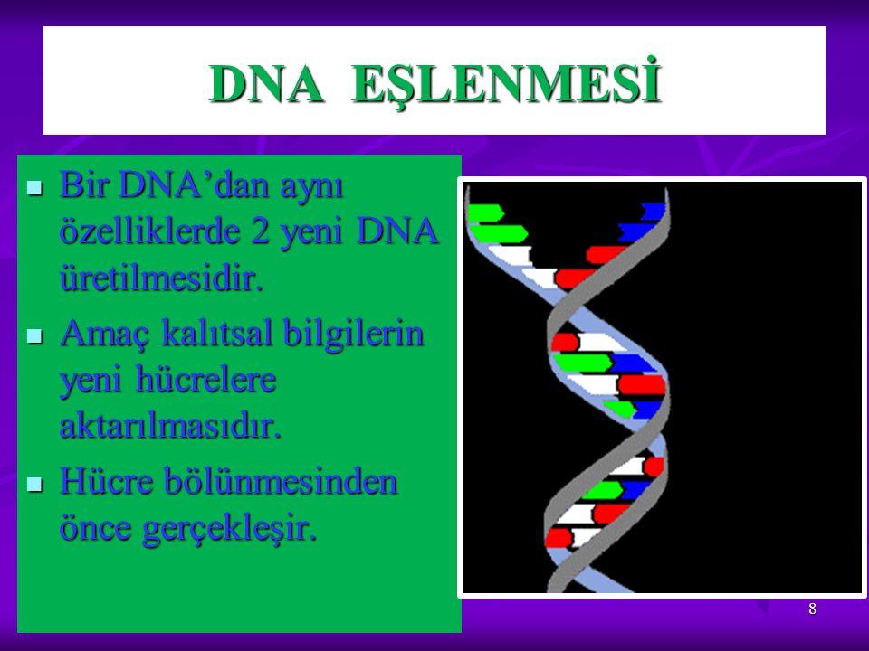 DNA EŞLENMESİ 8 Bir DNA'dan aynı özelliklerde 2 yeni DNA üretilmesidir. Bir DNA'dan aynı özelliklerde 2 yeni DNA üretilmesidir. Amaç kalıtsal bilgiler