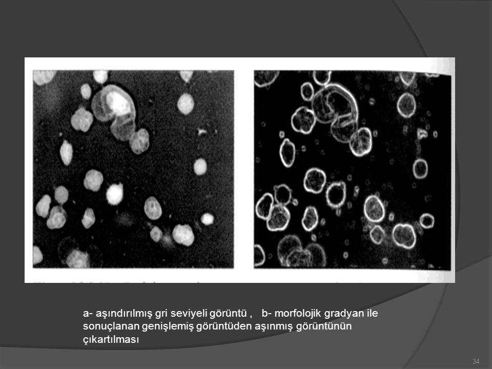 a- aşındırılmış gri seviyeli görüntü, b- morfolojik gradyan ile sonuçlanan genişlemiş görüntüden aşınmış görüntünün çıkartılması 34