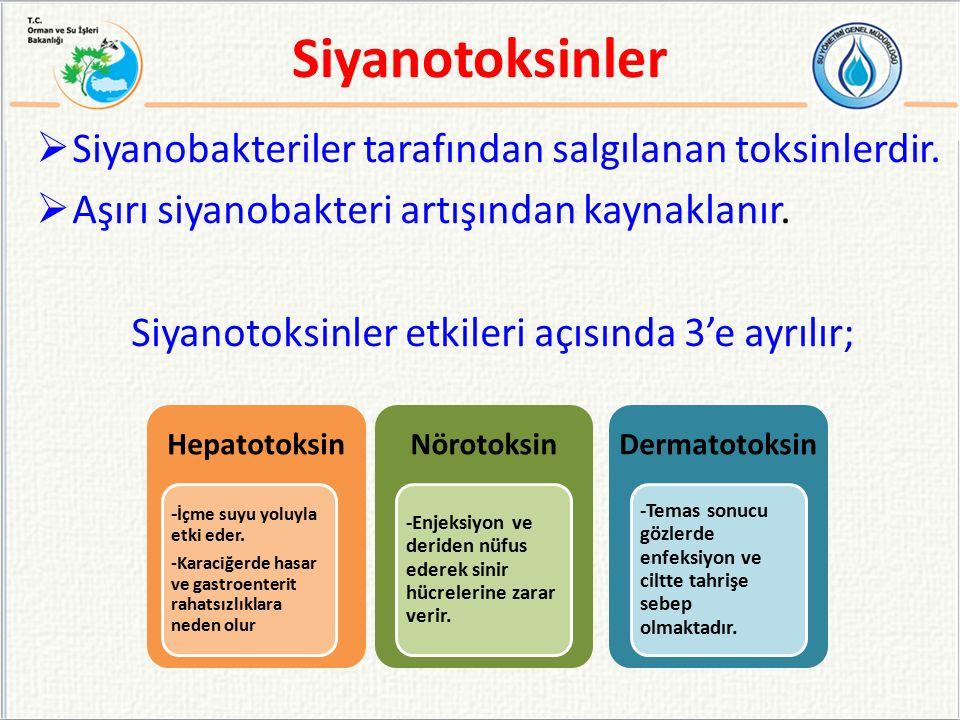  Kimyasal olarak ele alındığında da 3'e ayrılır;  Siklik peptitler  Alkaloidler  Lipopolisakkaritler (LPS) Siyanotoksinler
