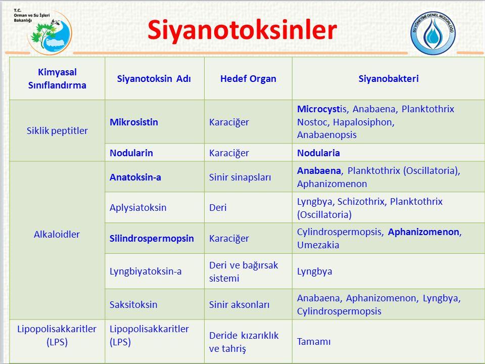 Kimyasal Sınıflandırma Siyanotoksin AdıHedef OrganSiyanobakteri Siklik peptitler MikrosistinKaraciğer Microcystis, Anabaena, Planktothrix Nostoc, Hapa