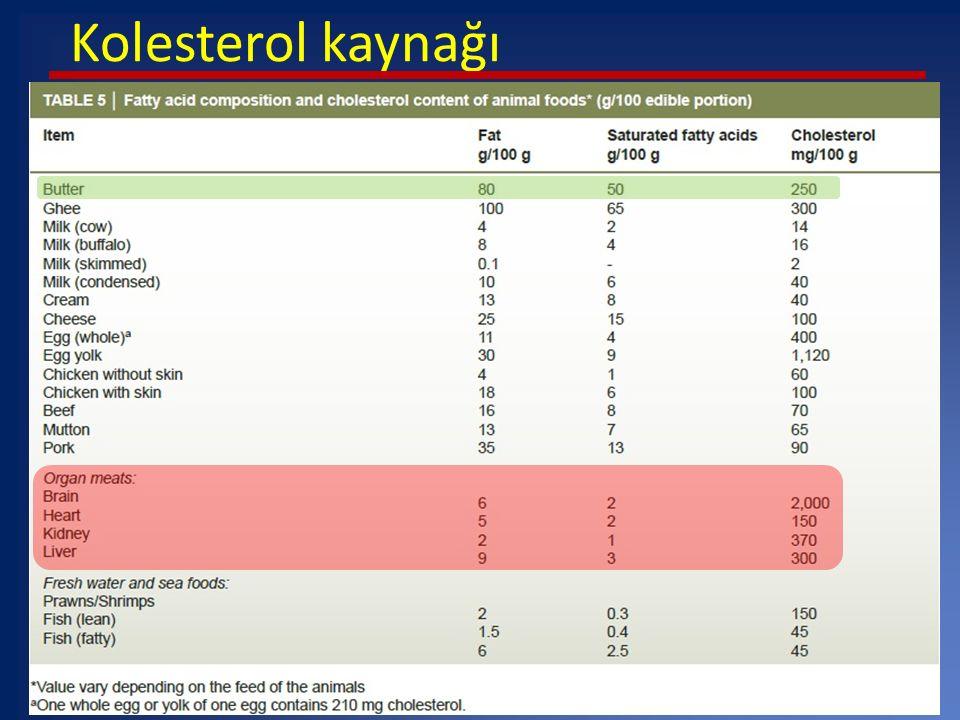 Kolesterol kaynağı