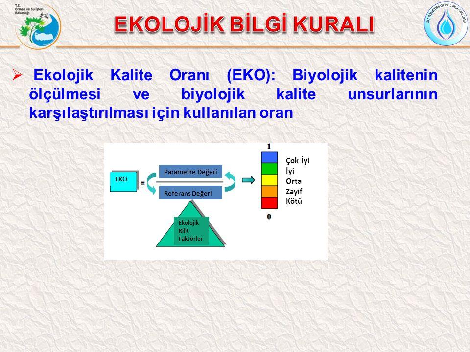  Ekolojik Kalite Oranı (EKO): Biyolojik kalitenin ölçülmesi ve biyolojik kalite unsurlarının karşılaştırılması için kullanılan oran Parametre Değeri Referans Değeri EKO Ekolojik Kilit Faktörler Çok İyi İyi Orta Zayıf Kötü