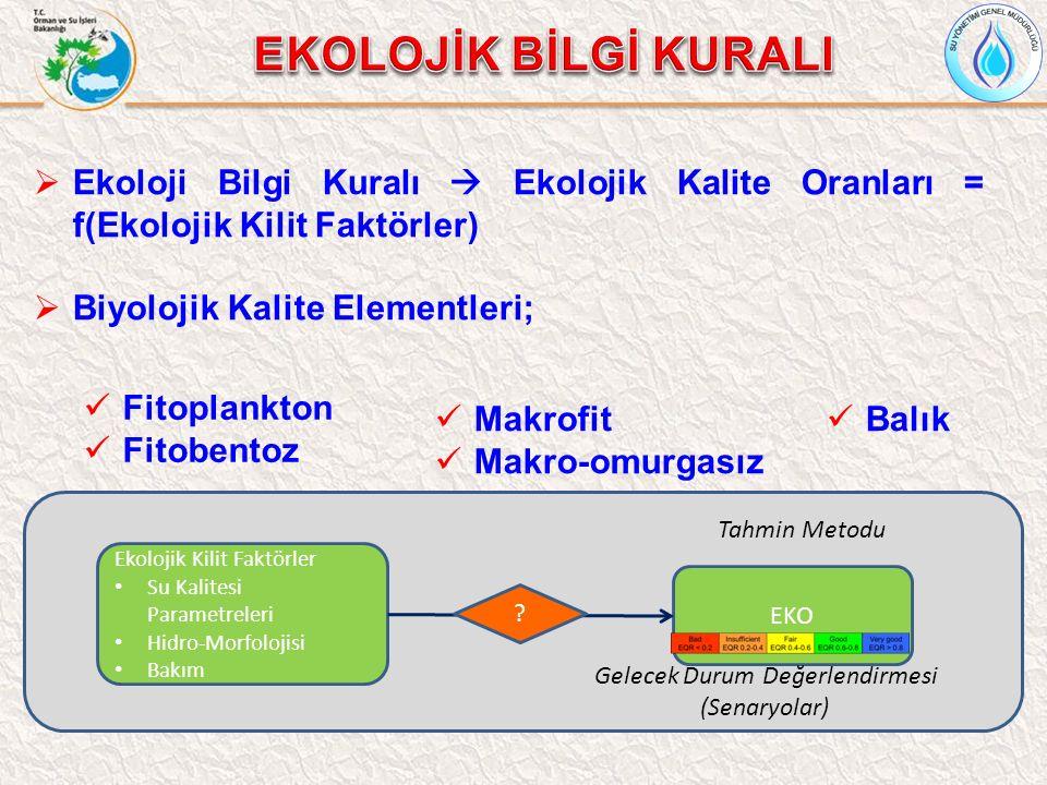 Ekolojik Kilit Faktörler Su Kalitesi Parametreleri Hidro-Morfolojisi Bakım EKO .
