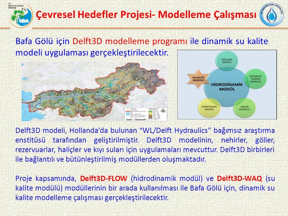 Delft3D modeli, Hollanda'da bulunan WL/Delft Hydraulics bağımsız araştırma enstitüsü tarafından geliştirilmiştir.