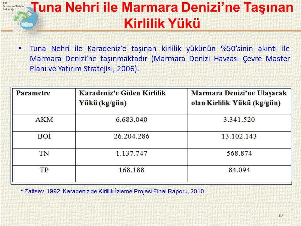 Tuna Nehri ile Marmara Denizi'ne Taşınan Kirlilik Yükü Tuna Nehri ile Karadeniz'e taşınan kirlilik yükünün %50'sinin akıntı ile Marmara Denizi'ne taşınmaktadır (Marmara Denizi Havzası Çevre Master Planı ve Yatırım Stratejisi, 2006).
