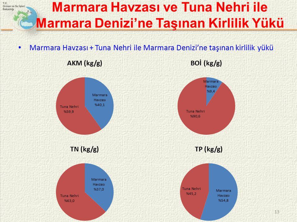 Marmara Havzası ve Tuna Nehri ile Marmara Denizi'ne Taşınan Kirlilik Yükü Marmara Havzası + Tuna Nehri ile Marmara Denizi'ne taşınan kirlilik yükü 13