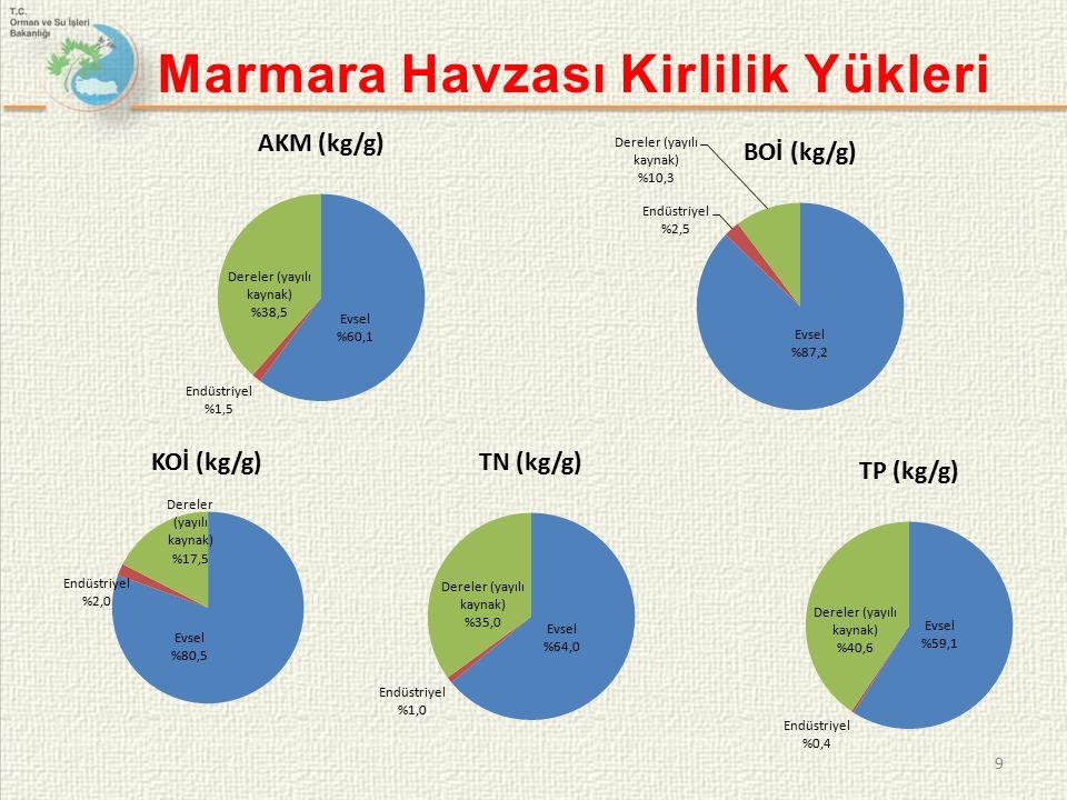 Marmara Havzası Kirlilik Yükleri 9