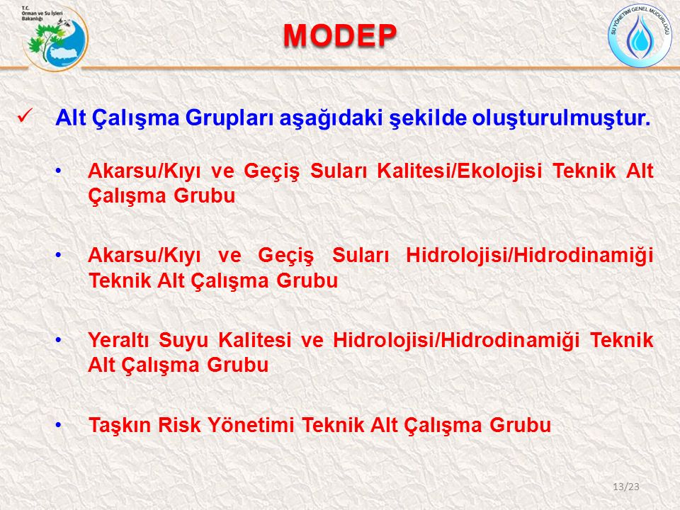 MODEP Alt Çalışma Grupları aşağıdaki şekilde oluşturulmuştur. Akarsu/Kıyı ve Geçiş Suları Kalitesi/Ekolojisi Teknik Alt Çalışma Grubu Akarsu/Kıyı ve G