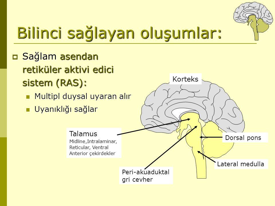 Bilinci sağlayan oluşumlar:  Sağlam asendan retiküler aktivi edici sistem (RAS): Multipl duysal uyaran alır Multipl duysal uyaran alır Uyanıklığı sağ