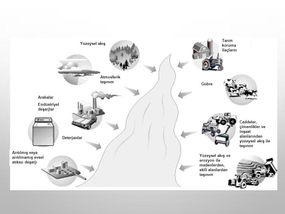Deterjanlar Arabalar Endüstriyel deşarjlar Yüzeysel akış Arıtılmış veya arıtılmamış evsel atıksu deşarjı Yüzeysel akış ve erozyon ile madenlerden, ekili alanlardan taşınım Caddeler, çimenlikler ve inşaat alanlarından yüzeysel akış ile taşınım Gübre Tarım koruma ilaçlarnı Atmosferik taşınım