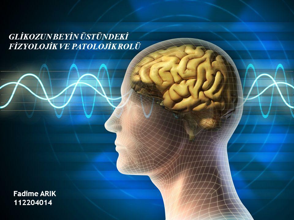 Beyin… Ağırlık.. %2 Enerji Kullanımı…%20