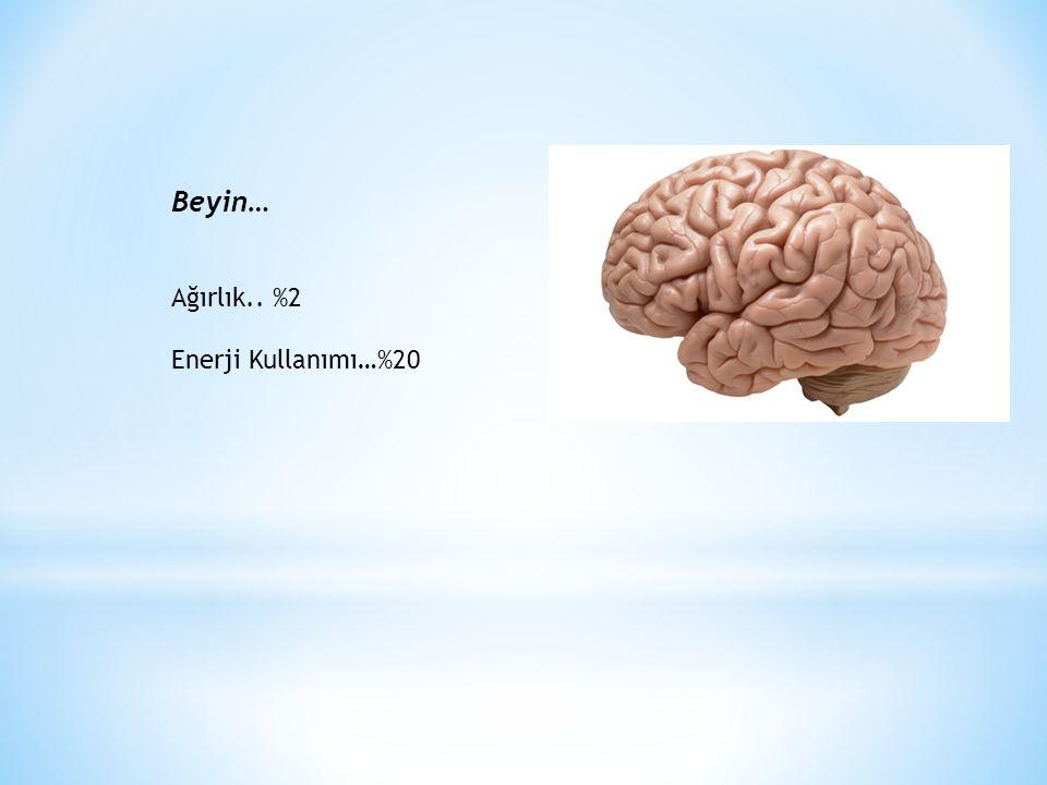 Glikoz Metabolizması: Beyin Yakıtı Temel Enerji Kaynağı Fizyolojik ve patolojik etki Hücre ölümleri Nöral ve nöral olmayan hücre oluşumları, nörotransmitterlerin oluşumu