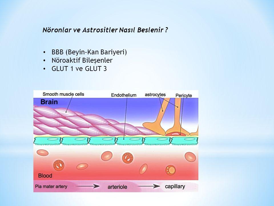 Nöronlar ve Astrositler Nasıl Beslenir ? BBB (Beyin-Kan Bariyeri) Nöroaktif Bileşenler GLUT 1 ve GLUT 3