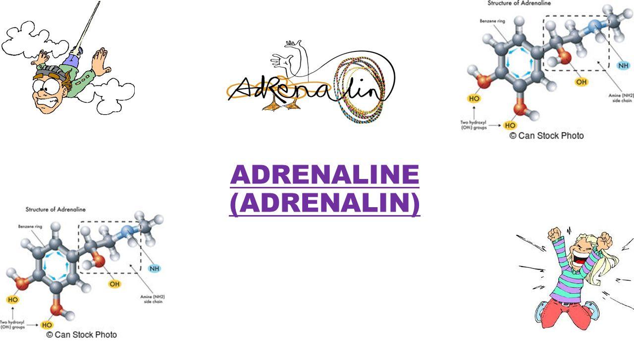 ADRENALINE (ADRENALIN)