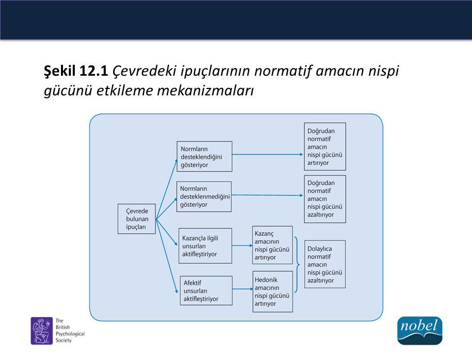 Şekil 12.1 Çevredeki ipuçlarının normatif amacın nispi gücünü etkileme mekanizmaları