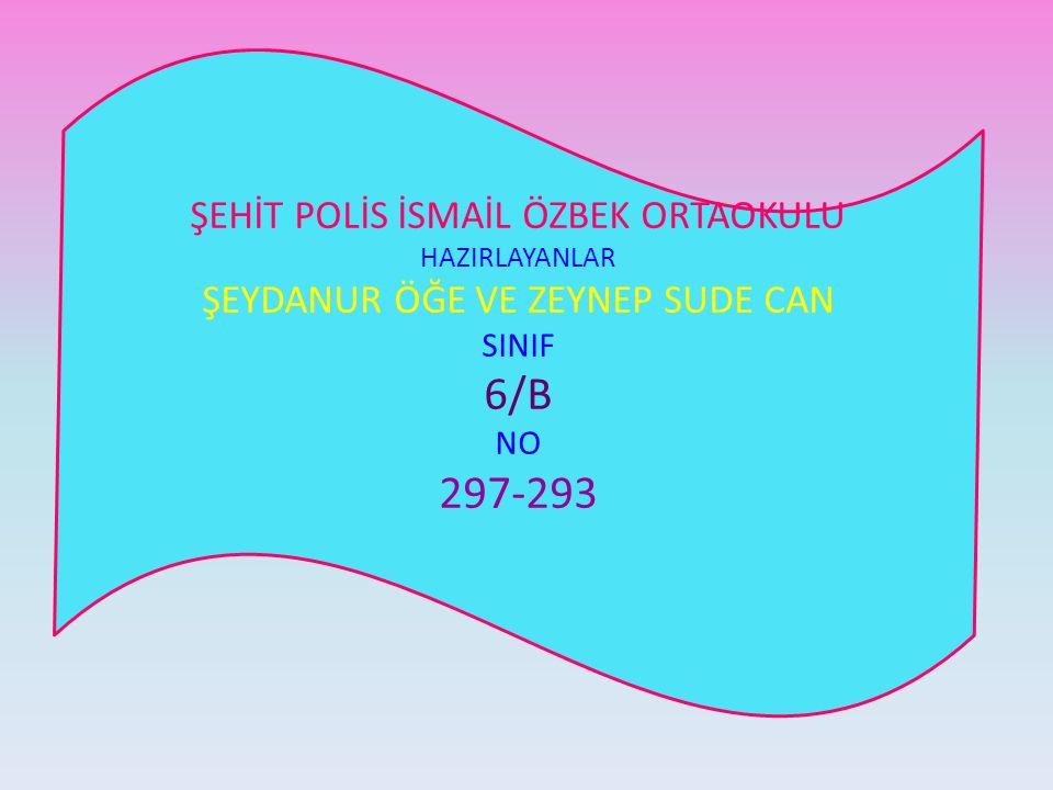 ŞEHİT POLİS İSMAİL ÖZBEK ORTAOKULU HAZIRLAYANLAR ŞEYDANUR ÖĞE VE ZEYNEP SUDE CAN SINIF 6/B NO 297-293