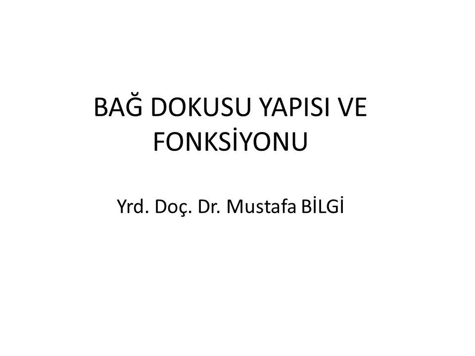 BAĞ DOKUSU YAPISI VE FONKSİYONU Yrd. Doç. Dr. Mustafa BİLGİ