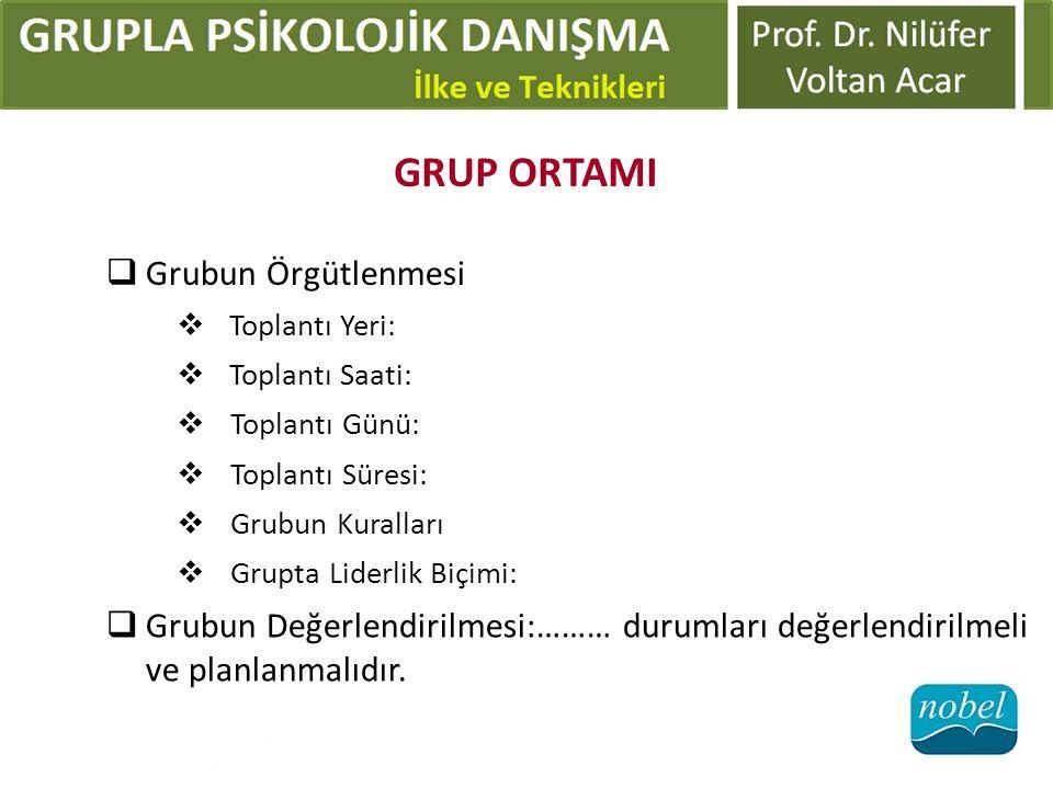 GRUP ORTAMI  Grubun Örgütlenmesi  Toplantı Yeri:  Toplantı Saati:  Toplantı Günü:  Toplantı Süresi:  Grubun Kuralları  Grupta Liderlik Biçimi: