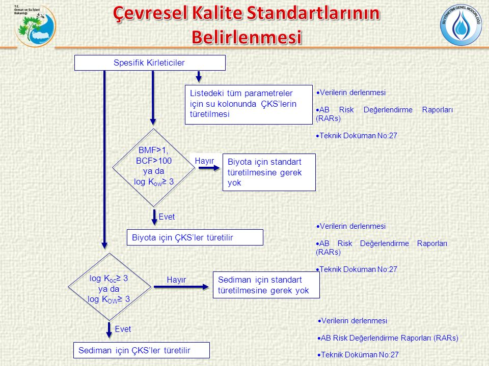 Spesifik Kirleticiler Listedeki tüm parametreler için su kolonunda ÇKS'lerin türetilmesi  Verilerin derlenmesi  AB Risk Değerlendirme Raporları (RARs)  Teknik Doküman No:27 Hayır Biyota için standart türetilmesine gerek yok BMF>1, BCF>100 ya da log K ow ≥ 3 Biyota için ÇKS'ler türetilir log K oc ≥ 3 ya da log K OW ≥ 3 Hayır Sediman için standart türetilmesine gerek yok Evet Sediman için ÇKS'ler türetilir  Verilerin derlenmesi  AB Risk Değerlendirme Raporları (RARs)  Teknik Doküman No:27  Verilerin derlenmesi  AB Risk Değerlendirme Raporları (RARs)  Teknik Doküman No:27