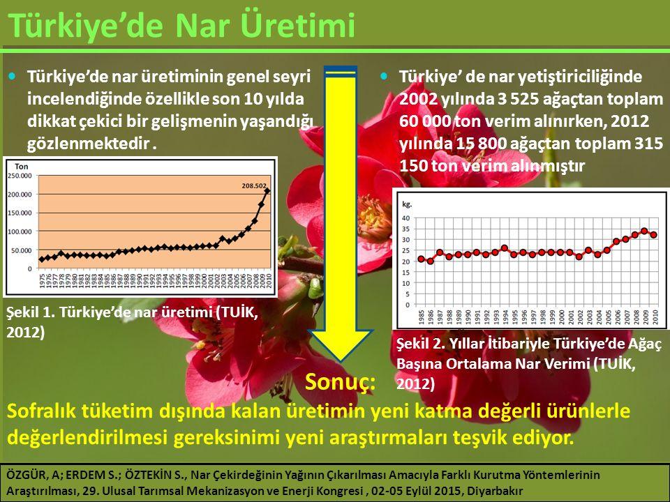 Araştırma Sonuçları Vakum Kurutma (70 °C) ÖZGÜR, A; ERDEM S.; ÖZTEKİN S., Nar Çekirdeğinin Yağının Çıkarılması Amacıyla Farklı Kurutma Yöntemlerinin Araştırılması, 29.