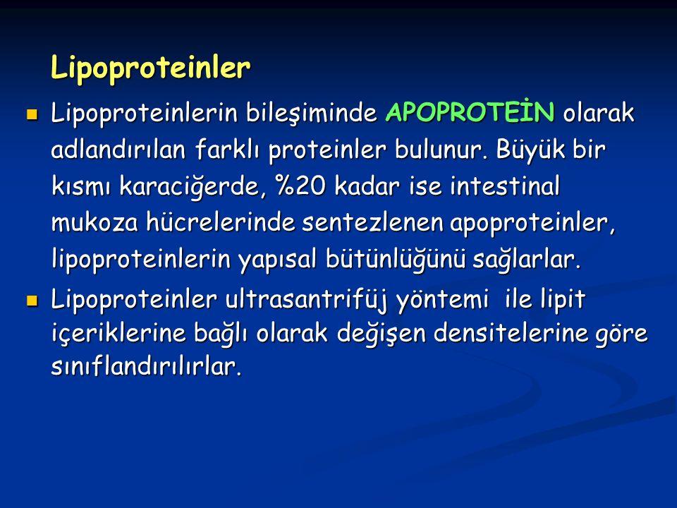 Lipoproteinler Lipoproteinlerin bileşiminde APOPROTEİN olarak adlandırılan farklı proteinler bulunur.