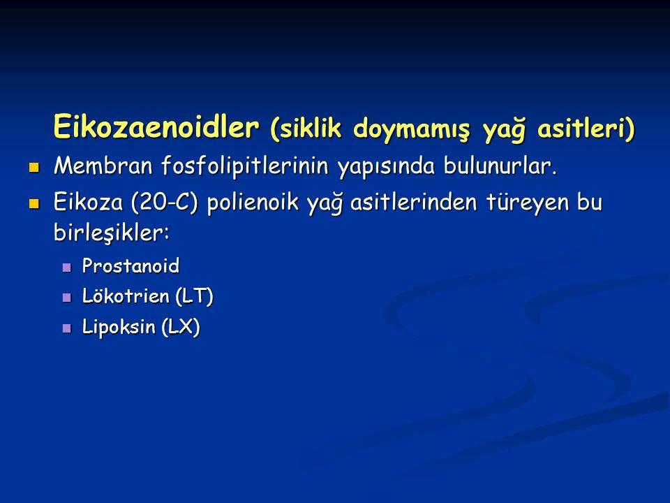 Eikozaenoidler (siklik doymamış yağ asitleri) Membran fosfolipitlerinin yapısında bulunurlar.