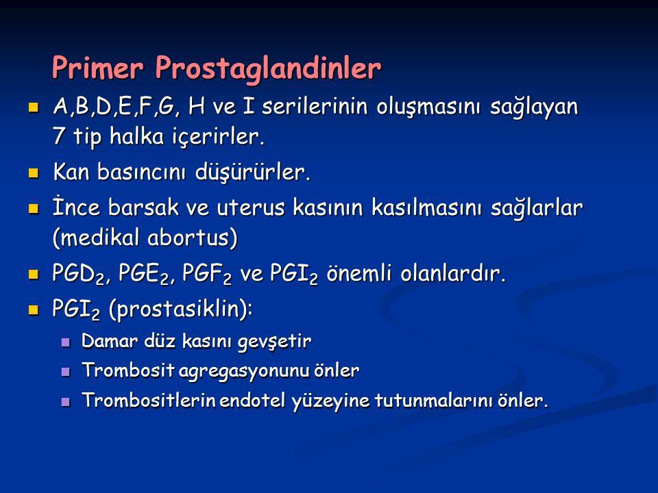 Primer Prostaglandinler A,B,D,E,F,G, H ve I serilerinin oluşmasını sağlayan 7 tip halka içerirler.