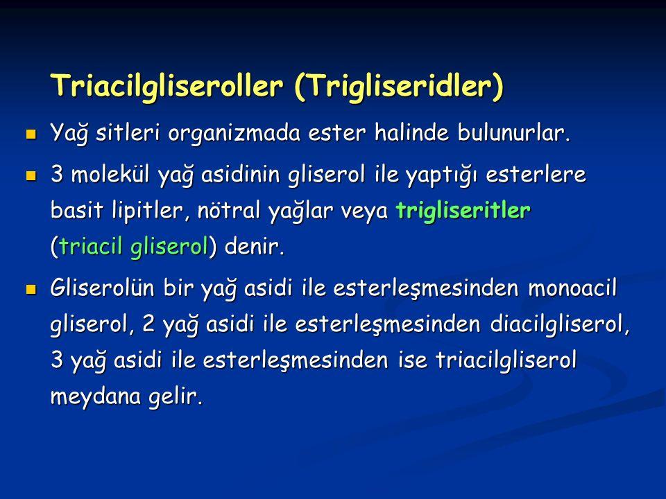 Triacilgliseroller (Trigliseridler) Yağ sitleri organizmada ester halinde bulunurlar.