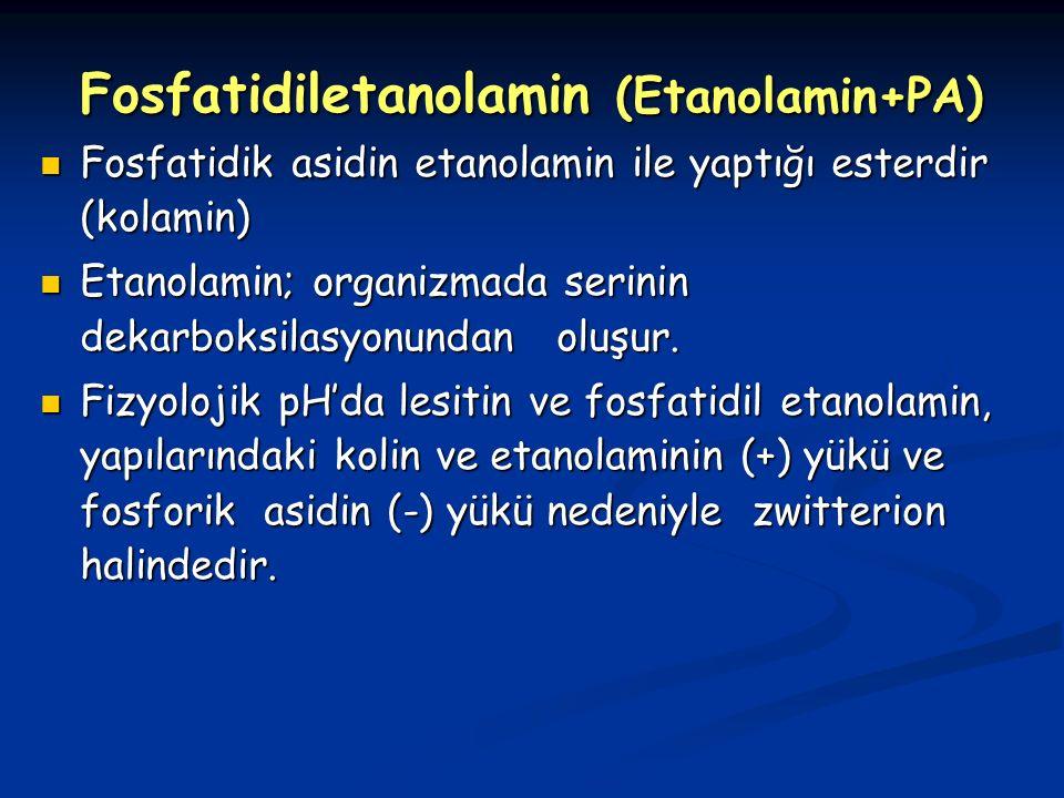 Fosfatidiletanolamin (Etanolamin+PA) Fosfatidik asidin etanolamin ile yaptığı esterdir (kolamin) Fosfatidik asidin etanolamin ile yaptığı esterdir (kolamin) Etanolamin; organizmada serinin dekarboksilasyonundan oluşur.