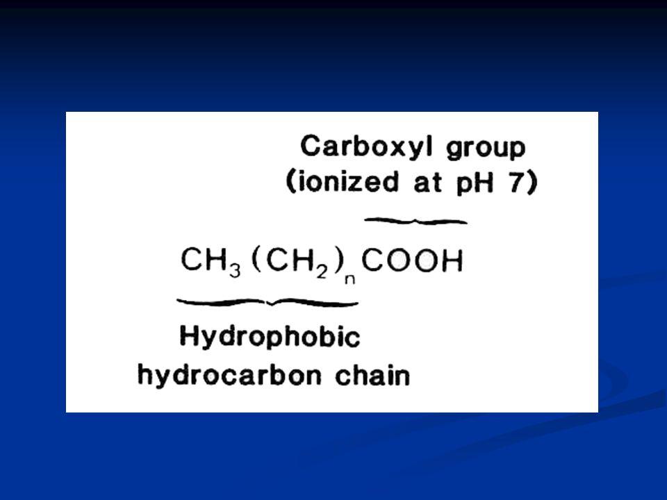 Numaralandırma sistemi 1-  numaralandırma: Karboksilik gruptan başlayarak 2- Omega (n) veya n numaralandırma:Karboksilik uca en uzakta bulunan metil grubundan başlayarak Yağ asit sembolleri; karbon sayısını, çift bağ sayısını, çift bağın pozisyonunu ve yerini belirtir.